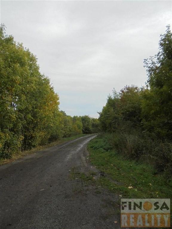 Nájem výrobních a skladových prostor v katastrálním území Vintířov u Radonic, obec Radonice.